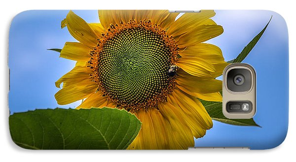 Galaxy Case featuring the photograph Giant Sunflower by Phil Abrams