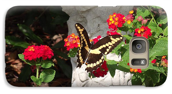 Galaxy Case featuring the photograph Giant Swallowtail On Lantana by Jayne Wilson