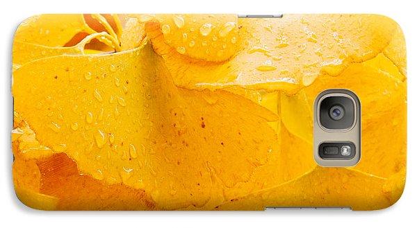 Galaxy Case featuring the photograph Ginkgo Biloba Leaves by Vizual Studio