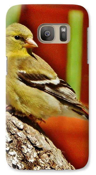 Galaxy Case featuring the photograph Girlie Goldfinch by VLee Watson