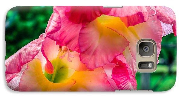Galaxy Case featuring the photograph Gladiolus by Rob Sellers