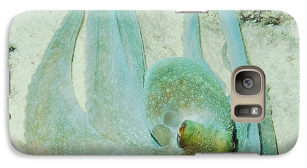 Galaxy Case featuring the photograph Gliding Reef Octopus by Amy McDaniel