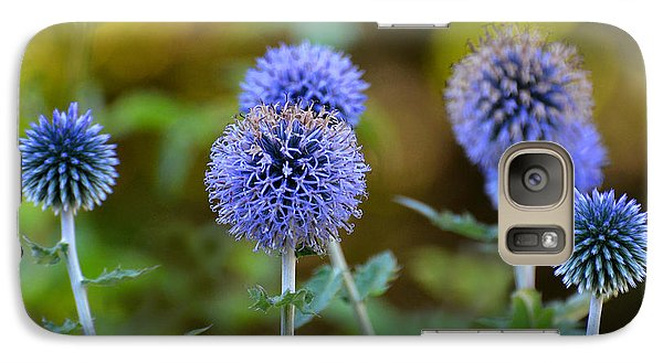 Galaxy Case featuring the photograph Globe Thistle by Rodney Campbell