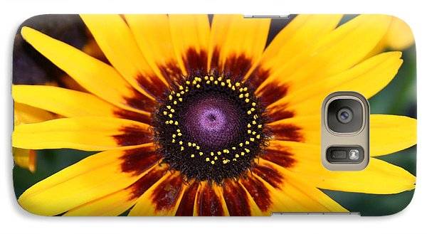 Galaxy Case featuring the photograph Gloriosa Daisy by Denyse Duhaime