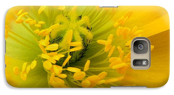Galaxy Case featuring the photograph Glory Of Nature by Deb Halloran