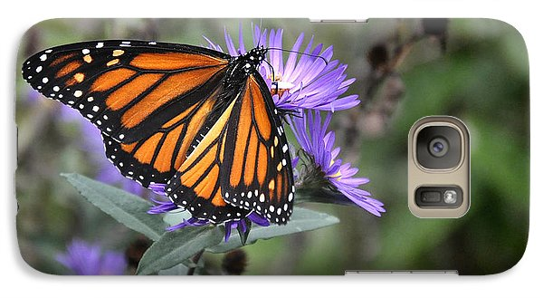 Galaxy Case featuring the photograph Glowing Butterfly by Nava Thompson