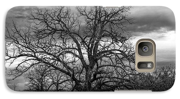 Galaxy Case featuring the photograph Gnarly Tree by Sennie Pierson