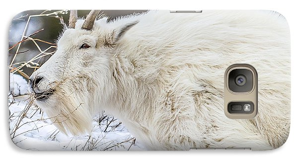 Galaxy Case featuring the photograph Goat On The Mountain by Yeates Photography