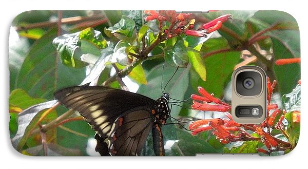 Galaxy Case featuring the photograph Gold Rim Swallowtail by Ron Davidson