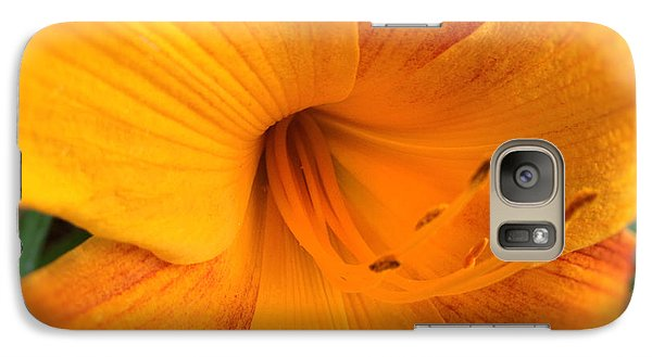 Galaxy Case featuring the photograph Golden Blossom by Paul Cammarata