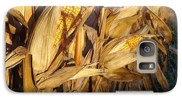 Galaxy Case featuring the photograph Golden Corn by Joseph Skompski