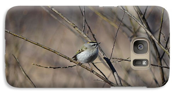 Galaxy Case featuring the photograph Golden-crowned Kinglet by James Petersen