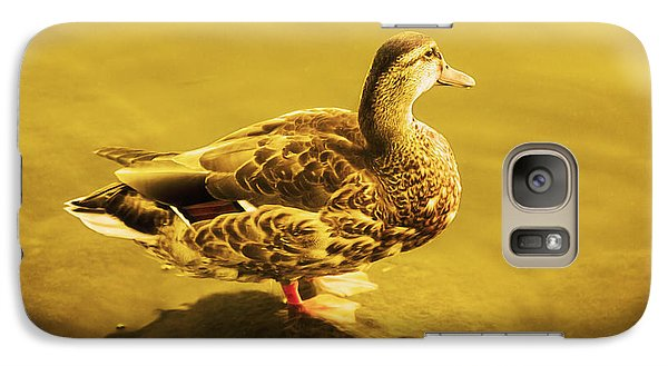 Galaxy Case featuring the photograph Golden Duck by Nicola Nobile
