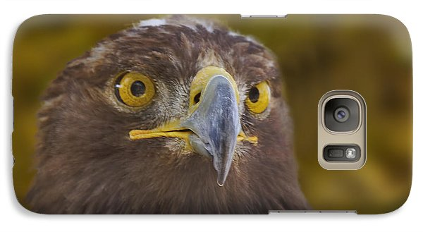 Galaxy Case featuring the photograph Golden Eagle  by Brian Cross