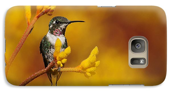 Galaxy Case featuring the photograph Golden Glow by Blair Wainman