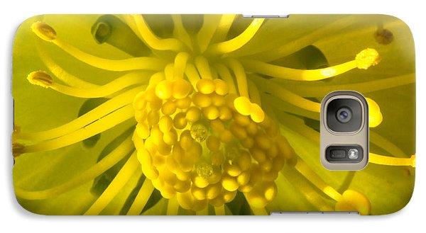 Golden Hellebore Glory Galaxy S7 Case