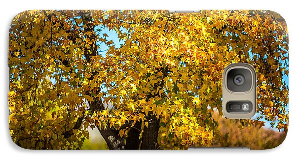 Galaxy Case featuring the photograph Golden Leaves Of Autumn by Mike Lee