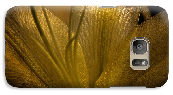 Galaxy Case featuring the photograph Golden Lily by Dave Garner