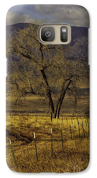 Galaxy Case featuring the photograph Golden Tree by Kristal Kraft