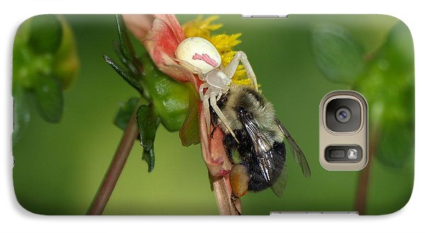 Galaxy Case featuring the photograph Goldenrod Spider by James Peterson