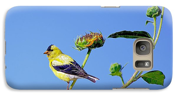 Galaxy Case featuring the photograph Goldfinch On Stem by Stephen  Johnson