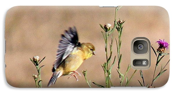 Galaxy Case featuring the photograph Goldfinch Quest 2 by Erica Hanel