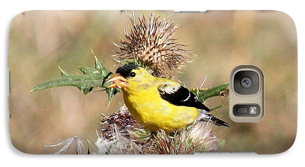 Galaxy Case featuring the photograph Goldfinch Quest 4 by Erica Hanel