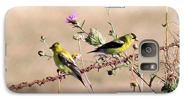 Galaxy Case featuring the photograph Goldfinch Quest 5 by Erica Hanel