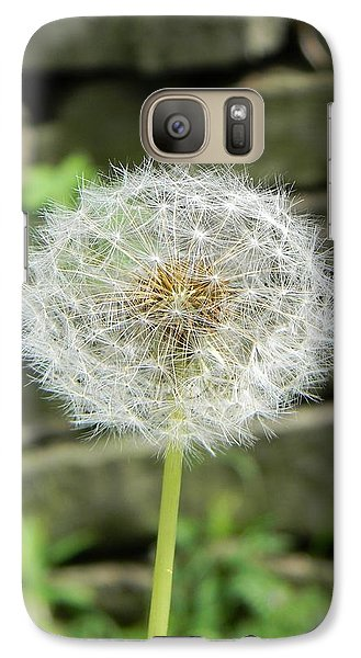 Galaxy Case featuring the photograph Gone To Seed by Jean Goodwin Brooks