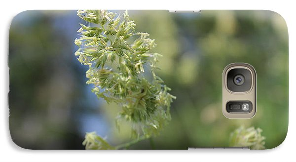 Galaxy Case featuring the photograph Gone To Seed by Jesslyn Fraser