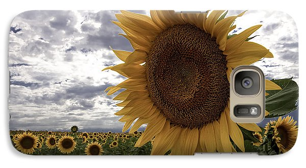 Galaxy Case featuring the photograph Good Morning Sunshine by Kristal Kraft