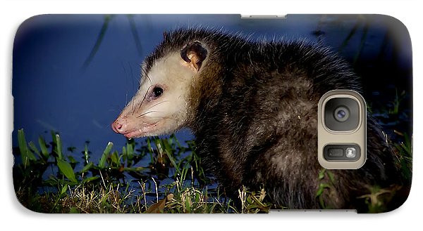 Galaxy Case featuring the photograph Good Night Possum by Olga Hamilton