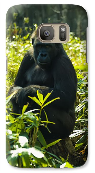 Gorilla Sitting On A Stump Galaxy S7 Case