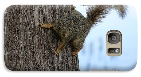 Galaxy Case featuring the photograph Lookin' For Nuts by Christy Pooschke