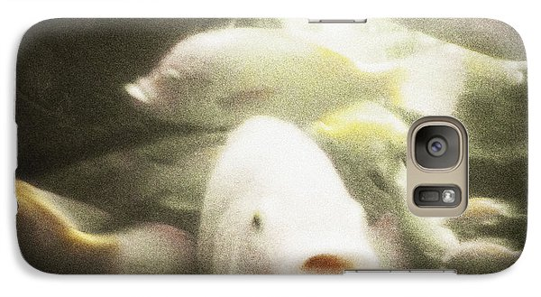 Galaxy Case featuring the photograph Gouramis by Bradley R Youngberg