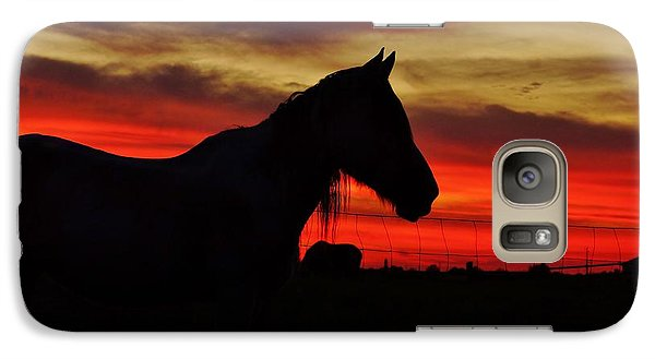 Galaxy Case featuring the photograph Gracie At Sunset by Lynda Dawson-Youngclaus