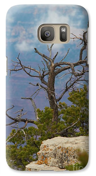 Galaxy Case featuring the photograph Grand Canyon Tree by Rod Wiens