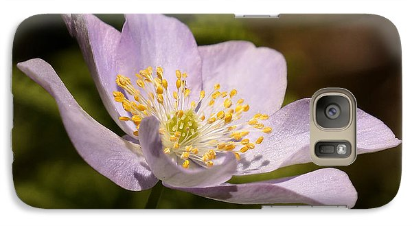 Galaxy Case featuring the photograph Grape Leaf Anemone by Inge Riis McDonald