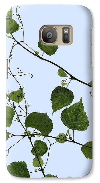 Galaxy Case featuring the photograph Grape Vine And Sky by Daniel Reed