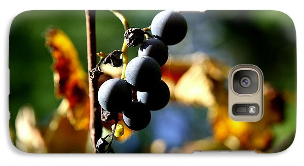Galaxy Case featuring the photograph Grapes On The Vine No.2 by Neal Eslinger