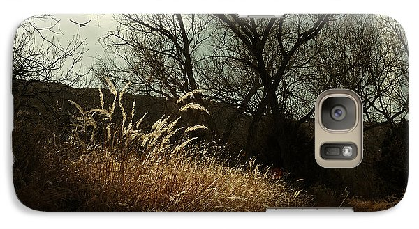 Galaxy Case featuring the photograph Grasses Of Winter by Karen Slagle