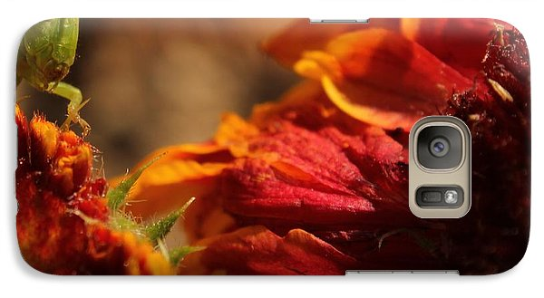 Galaxy Case featuring the photograph Grasshopper In The Marigolds by Joel Loftus
