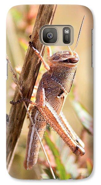 Grasshopper In The Marsh Galaxy S7 Case by Carol Groenen