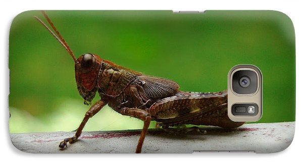 Galaxy Case featuring the photograph Grasshopper by Kara  Stewart