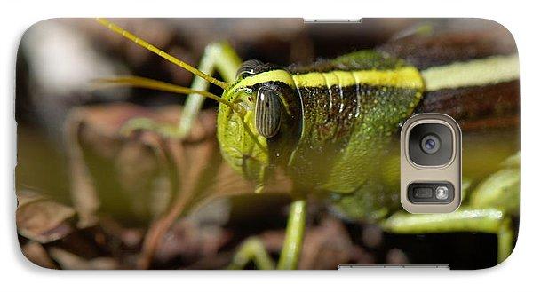Galaxy Case featuring the photograph Grasshopper by Karen Kersey