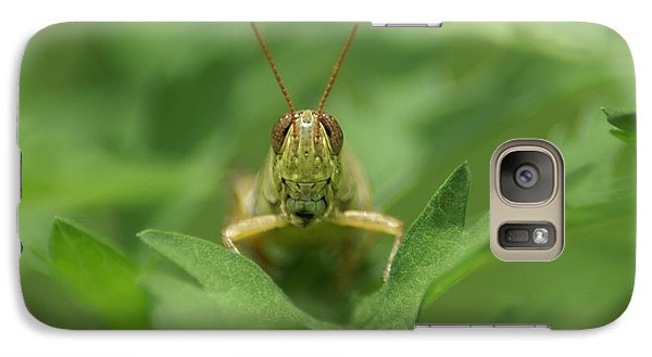 Galaxy Case featuring the photograph Grasshopper Portrait by Olga Hamilton