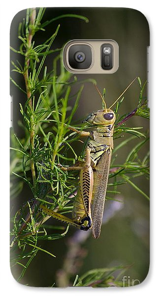 Galaxy Case featuring the photograph Grasshopper by Tannis  Baldwin