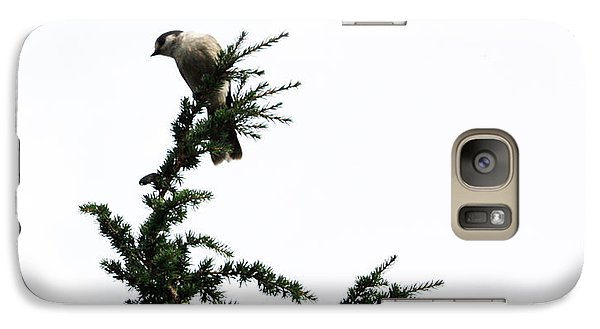 Galaxy Case featuring the photograph Gray Jay by Gerry Bates