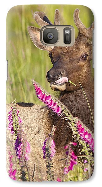 Galaxy Case featuring the photograph Grazing At Dusk - Cropped by Todd Kreuter