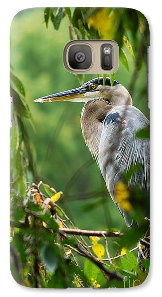 Galaxy Case featuring the photograph Great Blue Heron by Eva Kaufman